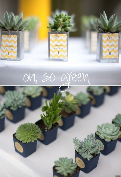 Succulents as placecards/favors--theSpunkySapphire.wordpress.com